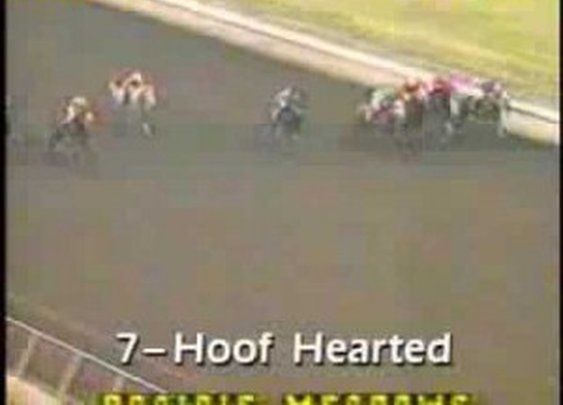 Hoof Hearted: May Well Be the Funniest Horse Name in History!