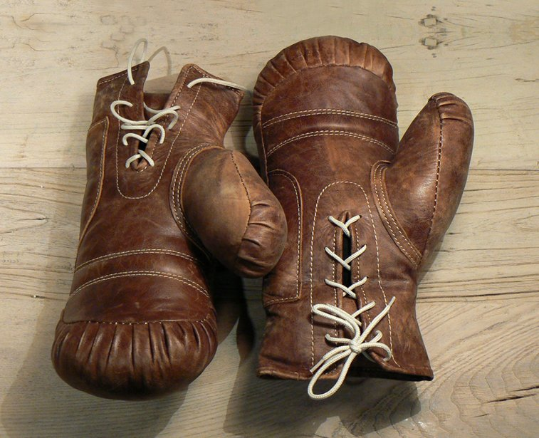 Vintage Boxing Gloves | That Should Be Mine