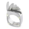 The Titanium Man Ring