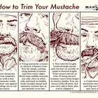 How to Trim Your Mustache
