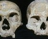 BBC News - Neanderthal large eyes 'caused their demise'