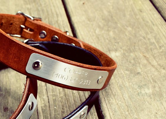 Leather Engraved Dog Collars | R. Riveter | Bourbon & Boots