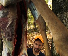 Why Your Venison Tastes Bad