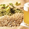 Local malter aims to serve state's booze biz