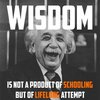 Wisdom According to Albert Einstein