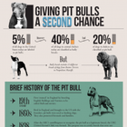 The Truth About Pit Bulls – National Geographic Infographic
