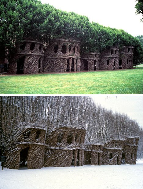 Inhabitable Arbosculptures