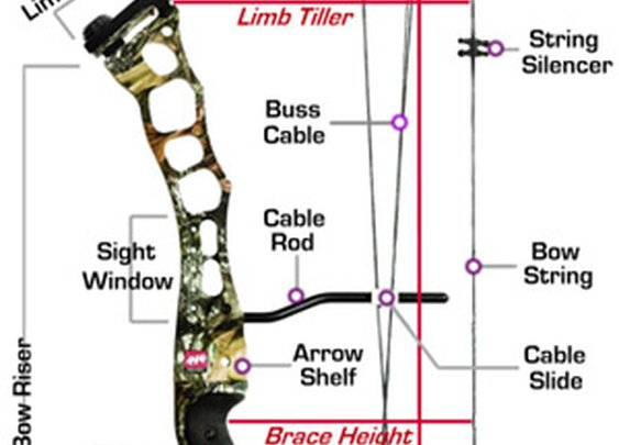 Compound Bow Selection Guide - HuntersFriend.COM
