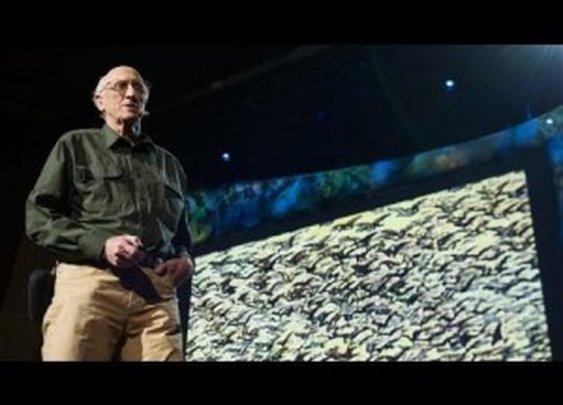 Stewart Brand: The Dawn of De-Extinction [TED Talk] | ClickExist