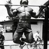 Self-Discipline Part 1: Hard work and Greatness | lifelikealion