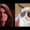 Alison Brie Recreates Popular Internet Memes