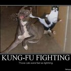 Kung-fu Fighting - Demotivational Poster | FakePosters.com