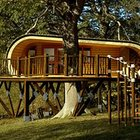 Luxury Tree House ~ Planet Viral