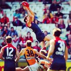 Photo by melbournefc • Instagram