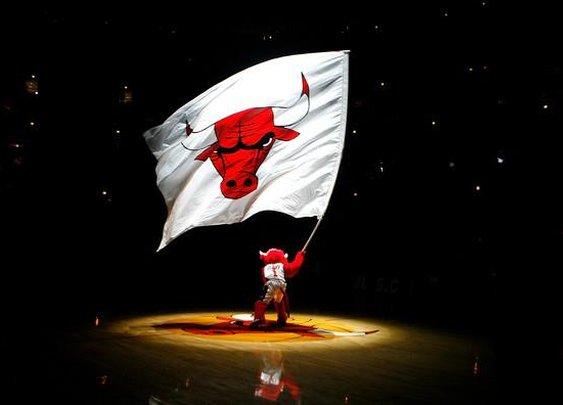 Da Bulls!