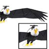 Remote Control Bald Eagle | That Should Be Mine