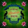 Africa by the Wellington International Ukulele Orchestra on SoundCloud