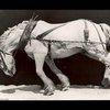 Blue Creek Quarter Horses: Pull It One More Mile