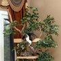 Lifelike Mature Large Cat Tree Houses