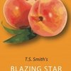 Cider Review –  Blazing Star Sparkling Peach | Crafty And The Beast
