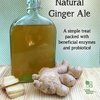 Natural Ginger Ale Recipe - Homemade Fermented Probiotic Drink