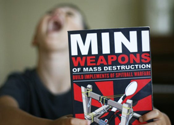 Mini Weapons of Mass Destruction [Book]
