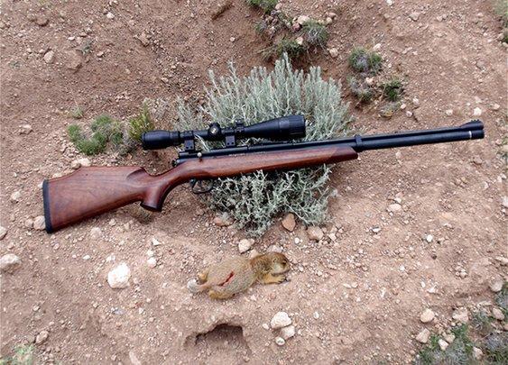 Crosman Benjamin Marauder .25 Air Rifle