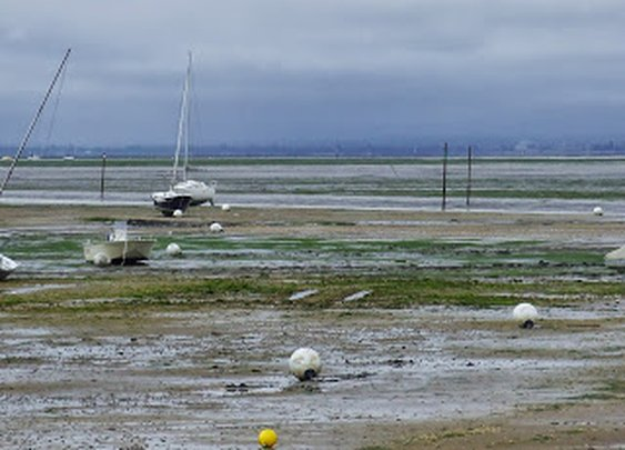 Customer service at low tide - very best service
