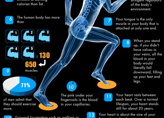 40 Facts About Fitness   Infographics   Tribesports