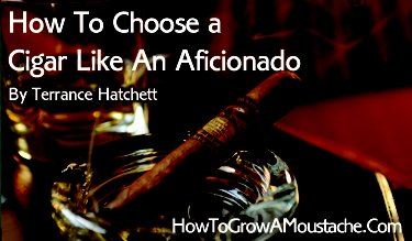 How To Choose a Cigar Like An Aficionado | Infographic and Guide