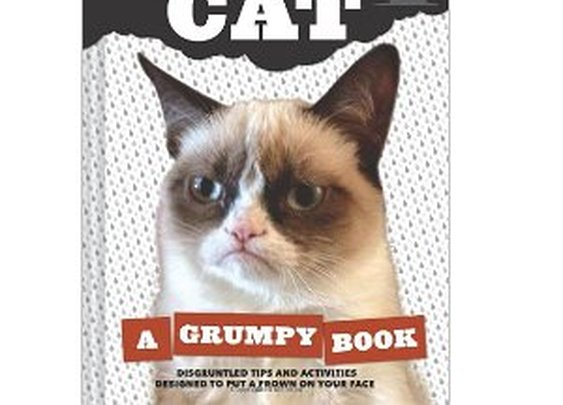 Grumpy Cat: A Grumpy Book