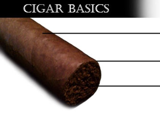 Cigar Basics | The Smoking Hot Cigar Chick