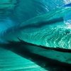 Amazing Photo of the Inside of a Wave by Alex Ormerod