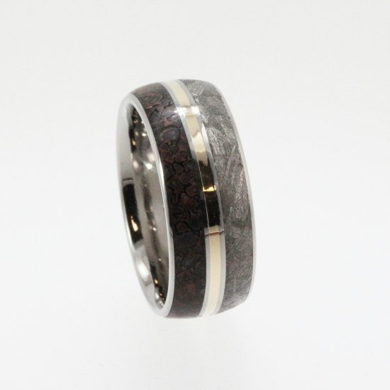 Meteorite Ring / Dinosaur Bone and Meteorite by jewelrybyjohan