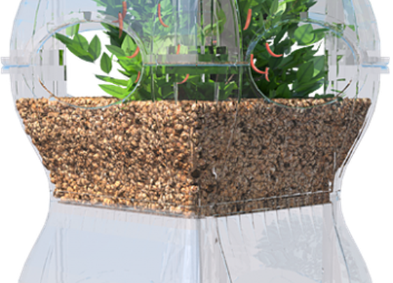 Aqualibrium uses fish to grow plants, and plants to grow fish