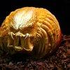 25 Mind-Blowing Halloween Pumpkins     «TwistedSifter
