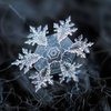 Amazing Close-Up Photos of Snowflakes