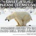 Please let me live...