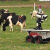 BBC News - Robot used to round up cows is a hit with farmers