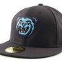 MiLB   Mobile Bay Bears