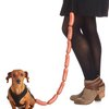Sausage Dog Leash | Cheaper Than A Shrink