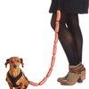 Sausage Dog Leash | Cheaper Than A Shrink