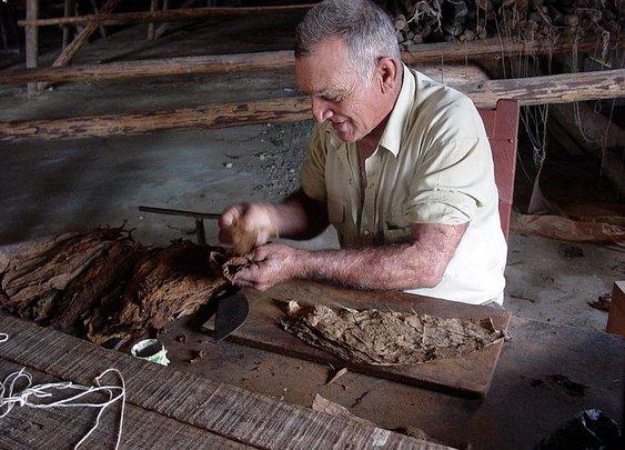 Cigar Rituals