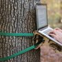 Standing Tree Desk - Manliest Desk Ever?