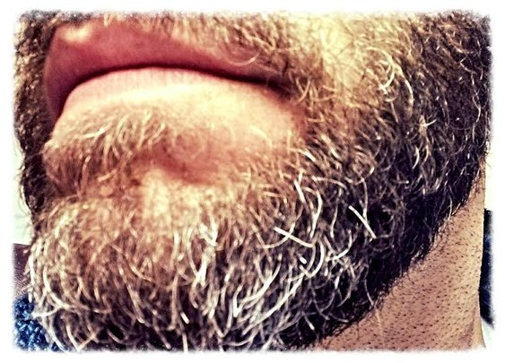 The Bearded Man's Creed : 101 or Less