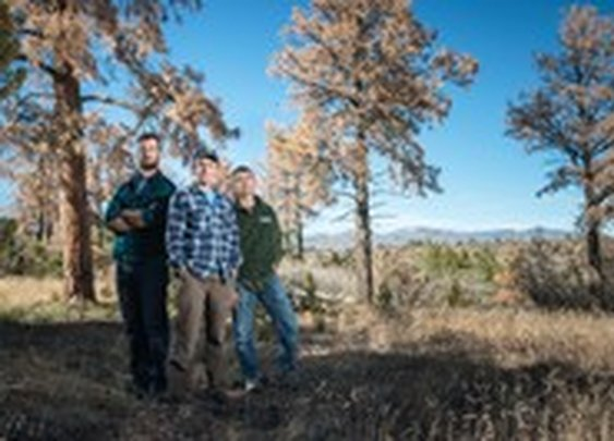 The Scientists saving the West's forests