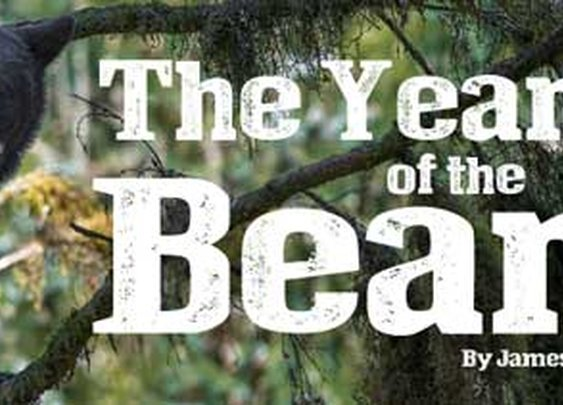 The Year of the Bear - Short Story