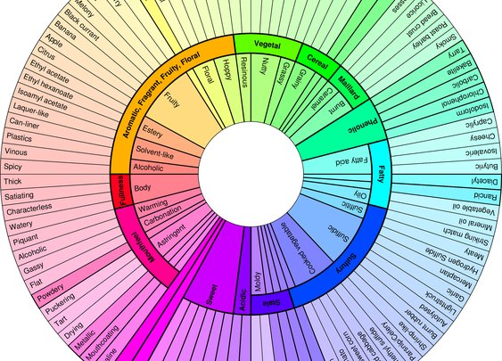 Beer Flavor and Aroma Wheel
