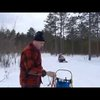 First Sled Dog Run of 2014 - YouTube