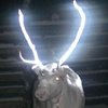 Finland: Reflective reindeer antlers aim to stop accidents